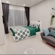 noi-that-studio-vinhomes-ocean-park